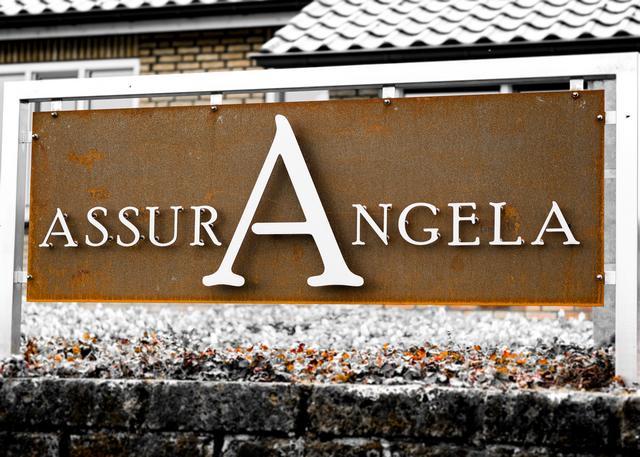 1_AssurAngela1